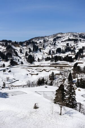 Rice terraces buried in snow