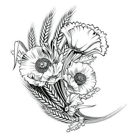 oldened: Vector poppy flower. line illustration Illustration