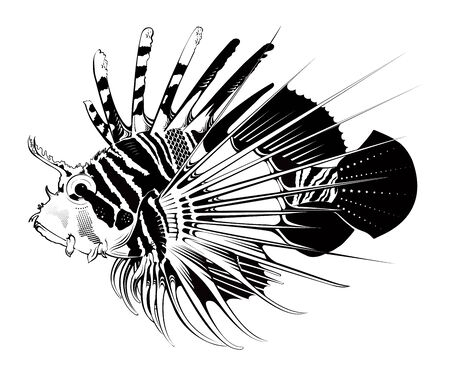 spawning: Tropical fish. Vector engraving illustration Illustration
