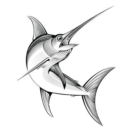 pez espada: el pez espada del vector. ilustración línea de grabado