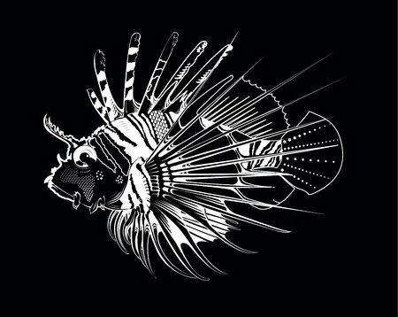 lionfish: Tropical fish. Vector engraving illustration Illustration