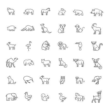 animal icons. vector outline icon set