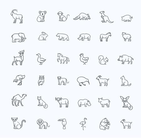 iconos de animales. Conjunto del icono del contorno. Zoo