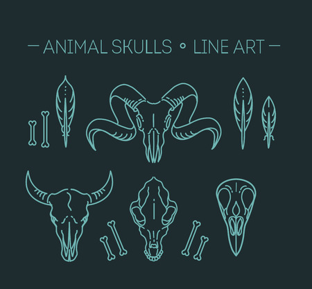 wildlife: icon skull animals heads. Wildlife, mammals Illustration