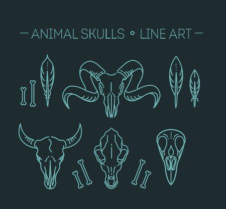 mammals: icon skull animals heads. Wildlife, mammals Illustration