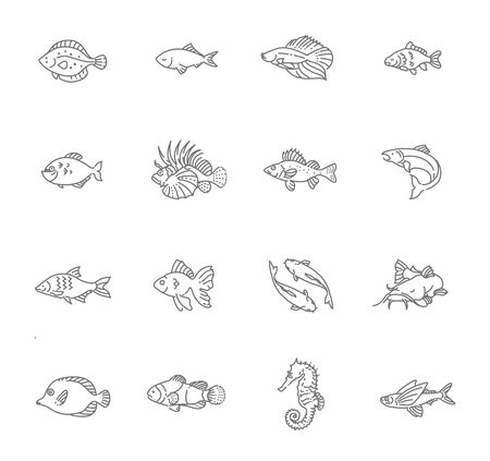 outline fish: Set of outline fish icons