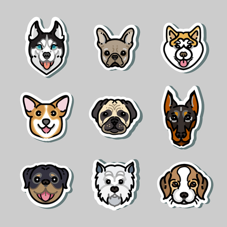 doberman: vector stickers dogs. Doberman, rottweiler, corgi, husky Stock Photo