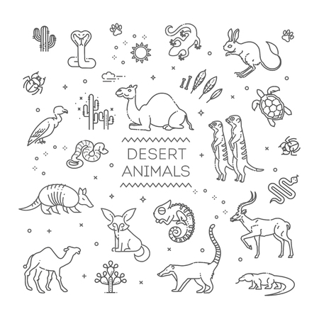 Line wildlife concept with different desert animals 向量圖像