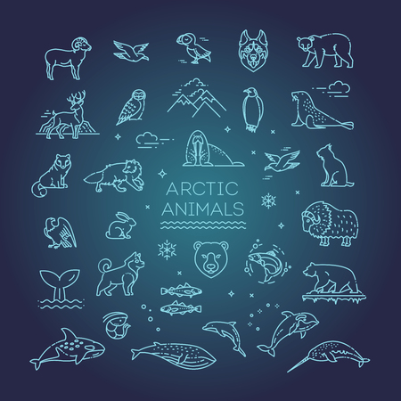 Set of linear vector Arctic animals