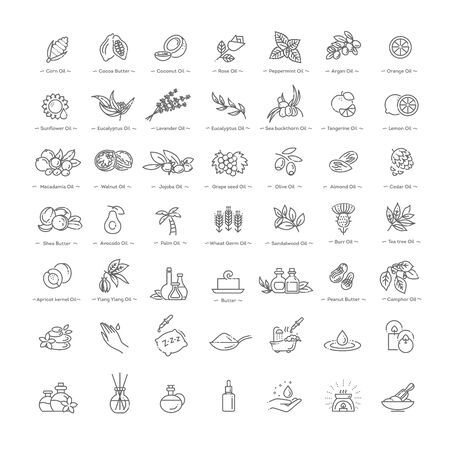 Vector set of natural ingredients and oils Иллюстрация