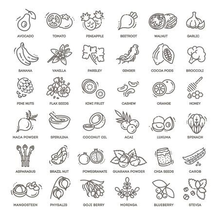 Superfoods line vector icons. Health and diet