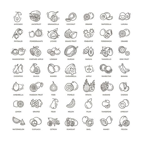 Fresh and natural ingredients. Thin line web icon set. Фото со стока - 136163923