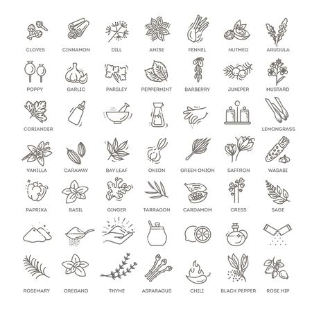 Condiment icons set. Outline set of condiment vector icons Ilustracja