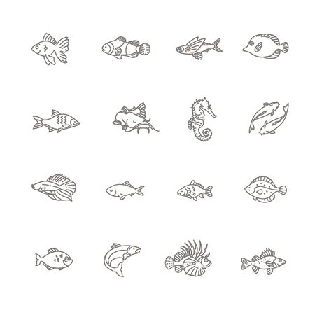 Set of vector fish icons. Set of vector outline fish icons, aquarium