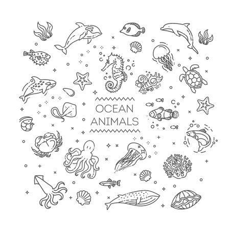 Marine life. Underwater fauna. Aquatic creatures