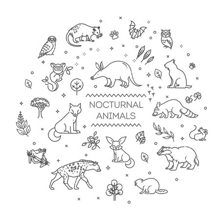 Vector. Set of linear vector nocturnal animals 向量圖像