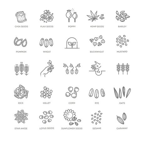 Plant seed vector icon set 向量圖像