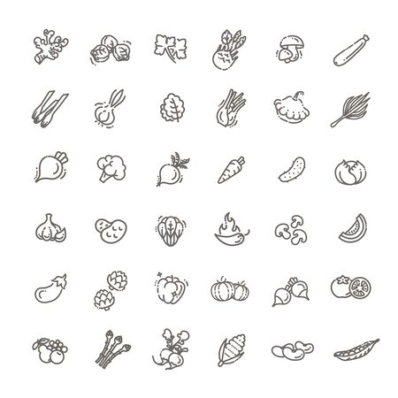 Basic vegetables thin line icon set