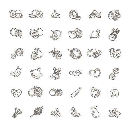 Fresh fruit and vegetables. Thin line flat design  イラスト・ベクター素材