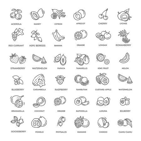 Fruits, berries, vegetarian - minimal thin line web icon set