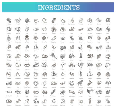 Vegetables and fruit thin line icon set. Vector ingredients Illustration