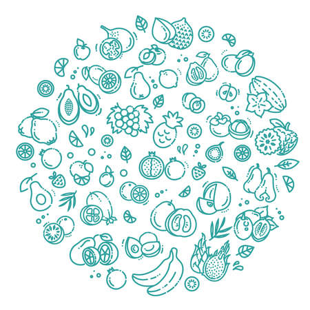 Fruits doodle drawing collection. Vector illustration Vector Illustratie