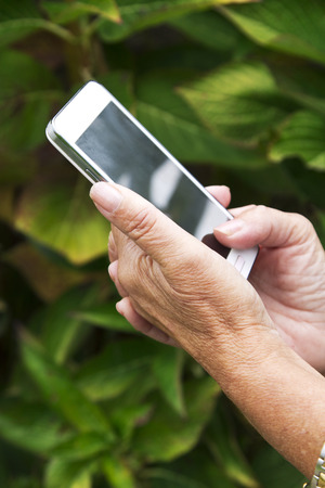 communications tools: hands of senior woman with mobile phone Stock Photo