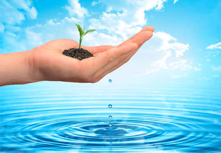 ecology protection concept Stock Photo - 1558883