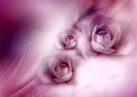 dromerige achtergrond met rozen Stockfoto