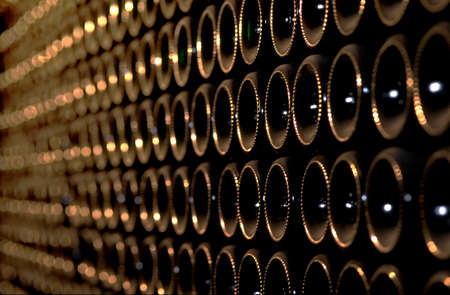 cave: � l'immense cave de vigne  Banque d'images