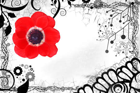 stilish: abstract background with red poppy flower