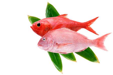 thai style: fish in thai style