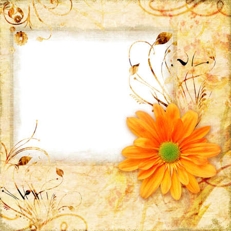 orange gerbera: retro framed background with flower
