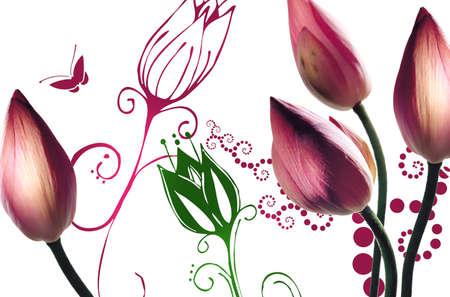 floral background Reklamní fotografie
