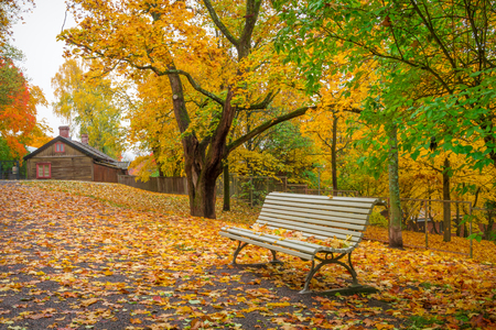 Lonely bench and fallen leaves in park in october photo