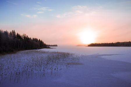 frozen lake: Frozen lake scenery in january morning sun