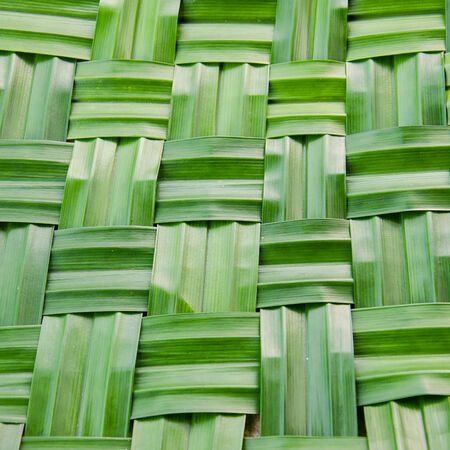 nus: Pandan Leaves Stock Photo