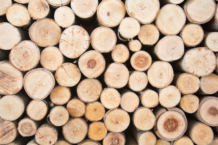 timber harvesting: Timber for fuel