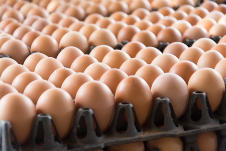 mass storage: Eggs from chicken farm in the package that preserved for sale Stock Photo
