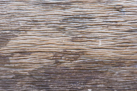 wood texture background: wood texture. Abstract background