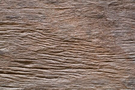 wood textures: wood bark textures backgrounds Stock Photo