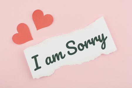 Lo siento concepto de texto escribir en papel Foto de archivo - 73113206