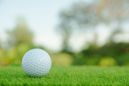 Golf ball on green grass ready to play at golf course. with copy space