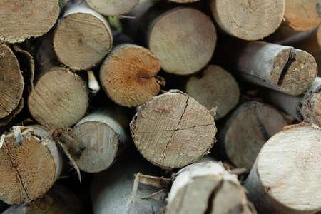 Wooden logs stack, tree stumps background 版權商用圖片