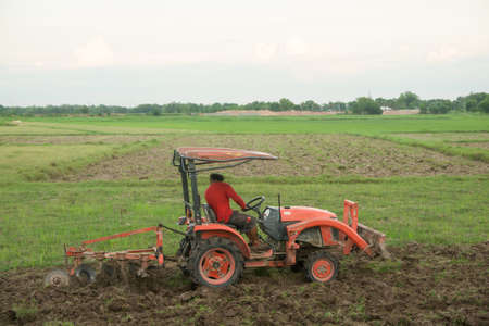 Tractor working plows a field on the farm for planting