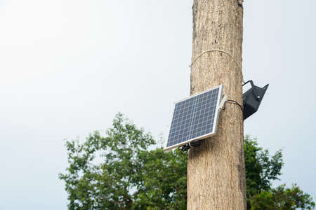 Solar cell install on the tree