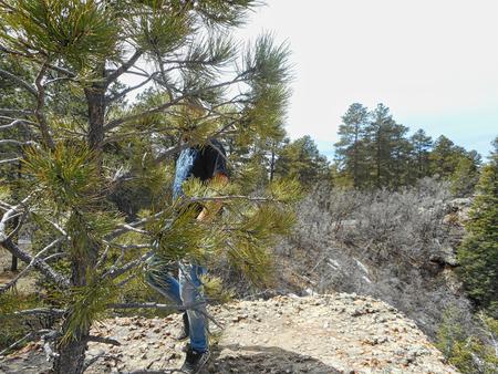 man is hidden behind a tree Stock Photo