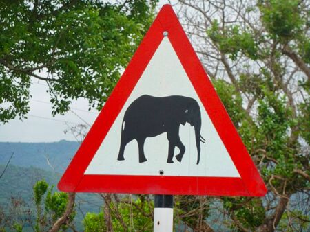 warning sign elephants in africa
