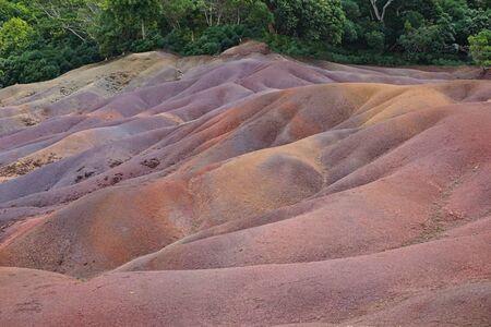 cold lava rocks in a jungle