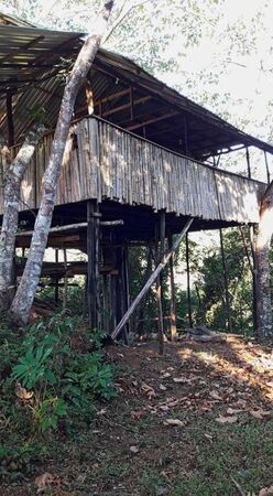 a hut somewhere in the jungle in brasil 写真素材